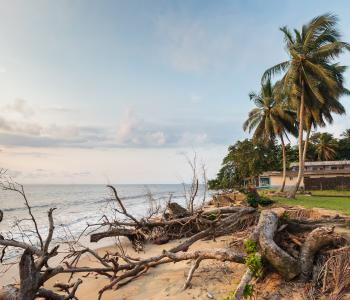 Coastal vulnerability in Central Africa