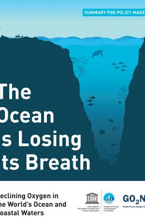 The Ocean is losing its breath: declining oxygen in the world's ocean and coastal waters; summary for policy makers